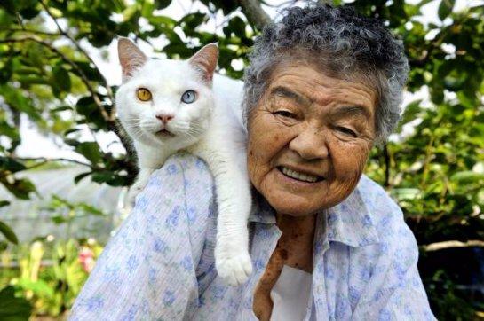 Японская старушка и её кошка Фукумару с разными глазами
