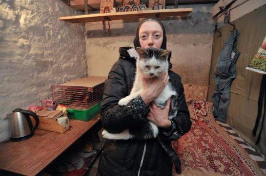 В Задонске монахиня открыла кошачий приют