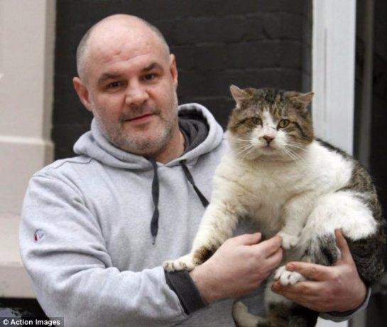 Кот со стадиона Энфилд, видимо, нашел себе хозяина