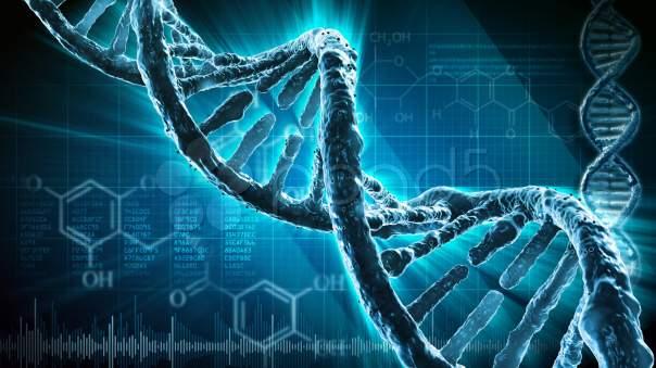 В ДНК записано рекордное количество данных