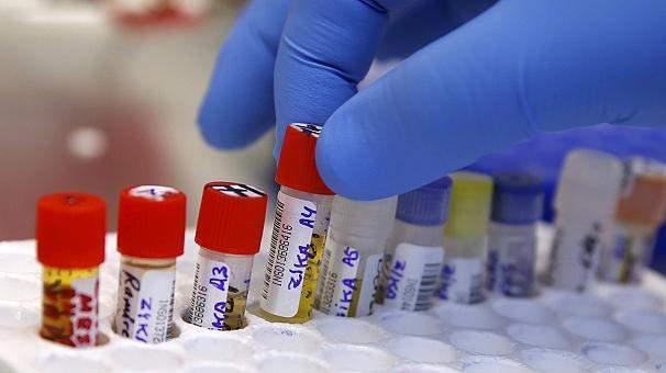 Против вируса Зика создана вакцина