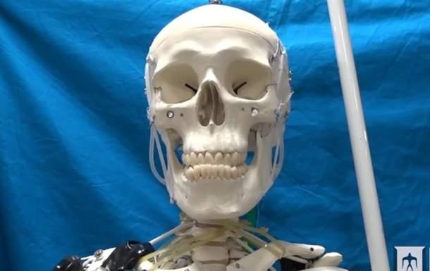 Японские специалисты создали точную копию человеческих мышц