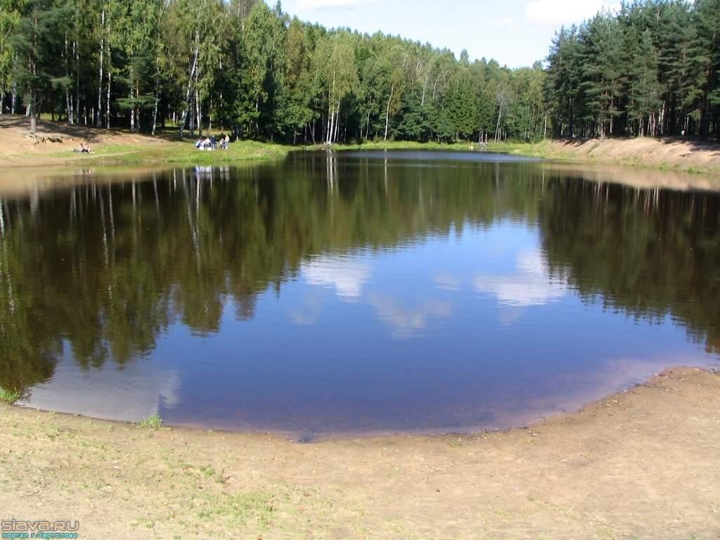 В Волгоградском пруду обнаружили тела брата и сестры