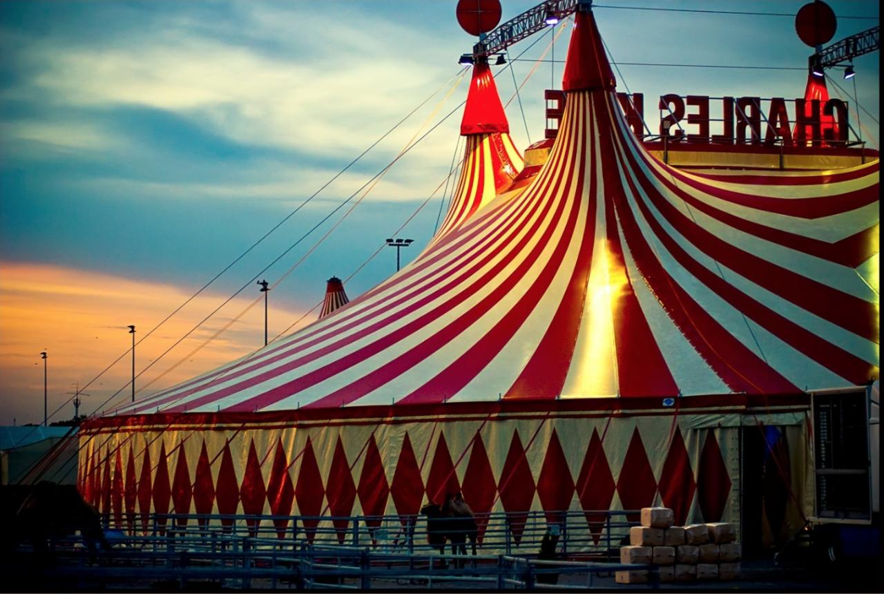Исполком Львова запретил размещение цирков-шапито