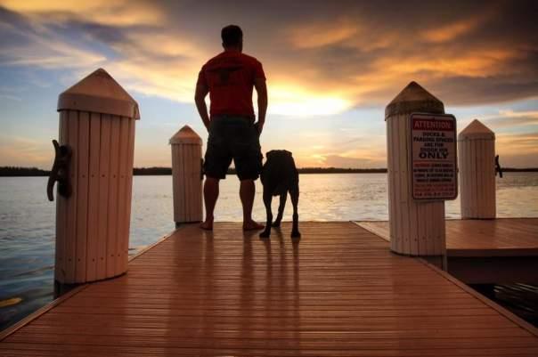 Хозяин собаки подарил своему любимцу последнее путешествие