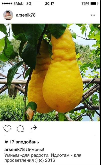 Арсен Аваков выкладывает фото странных лимонов в своем Instagram