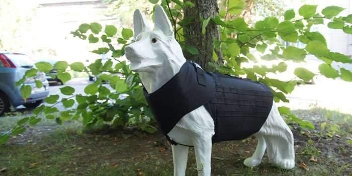 За безопасность братьев младших! Украинские конструкторы разработали собачий бронежилет