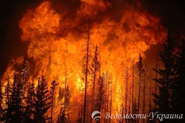 В Калифорнии люди покидают свои дома из-за пожара