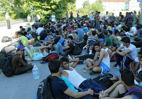 300 беженцев устроили голодовку с требованием пустить их в Венгрию