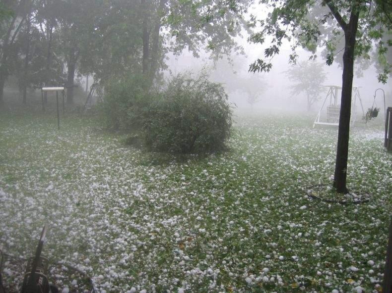 Сегодняшний ураган в Ужгороде вырывал с корнем деревья и рушил кровли домов