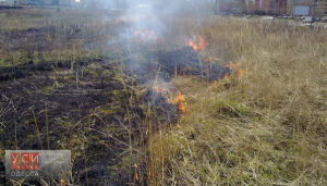 В Одесской области потушили возгорание сухой травы