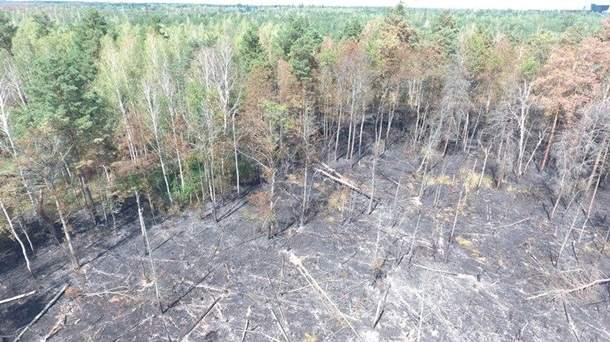 В Чернобыле ликвидировали пожар