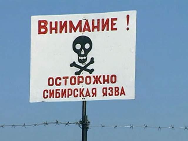 В России отмечена вспышка сибирской язвы