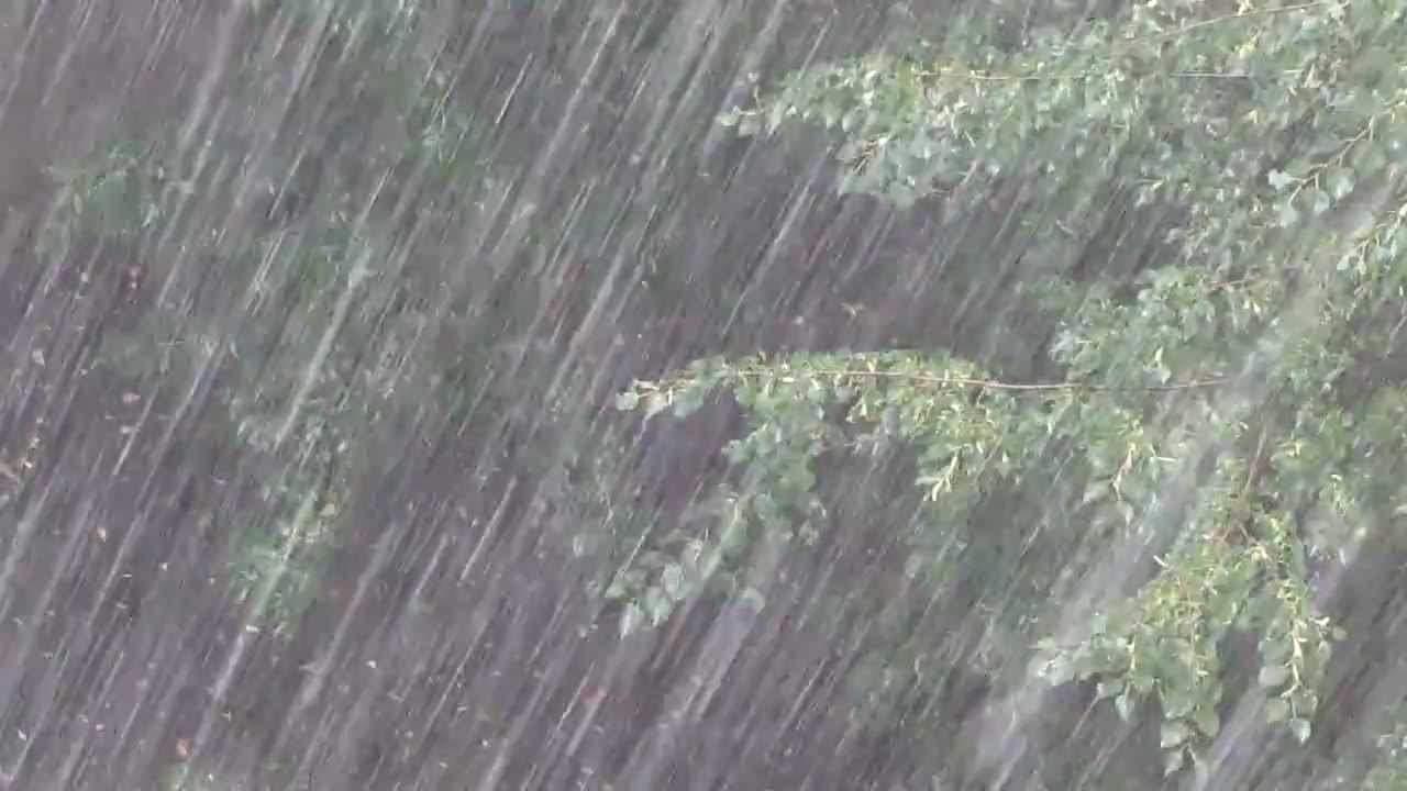 В Закарпатской области объявлено штормовое предупреждение