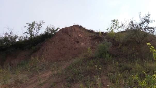 В Донецкой области обнаружен мамонт