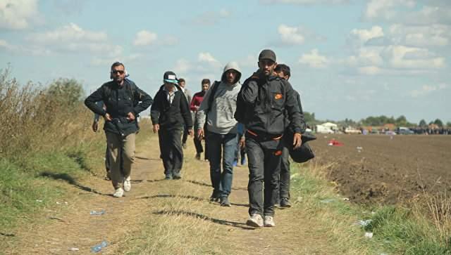 В Болгарии задержали 65 мигрантов без удостоверения личности