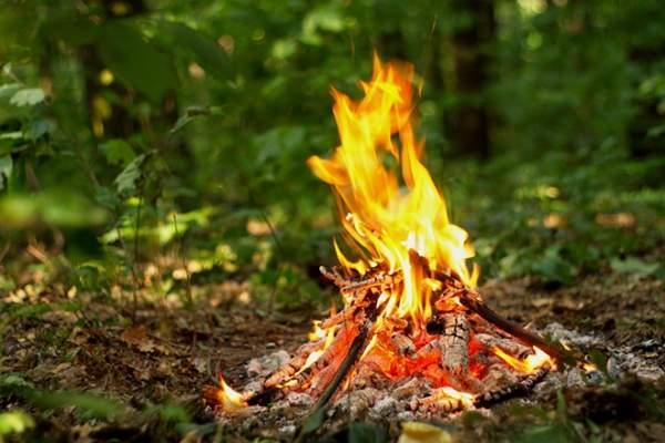 В Украине отмечен высокий уровень пожарной опасности