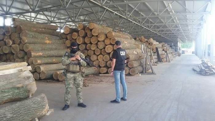 В Винницкой области остановили незаконную вырубку леса