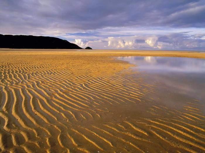 На французском пляже отдыхающего спасли из песочного плена