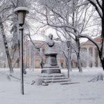 На Украине нашли похищенный бюст Пушкина