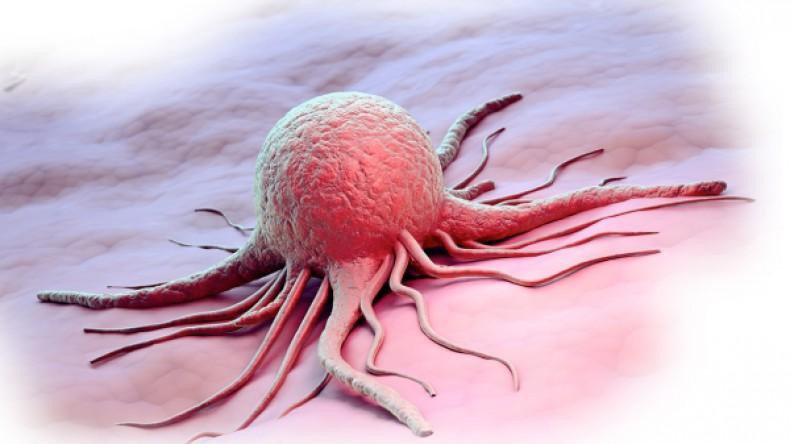 Названы продукты и вещи, способные вызвать развитие рака