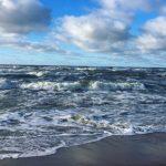 В Балтийском море ожидается экологическая катастрофа