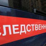 В Мурманской области бродячие собаки напали на ребёнка