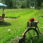Более трети россиян в этом году провели отпуск дома