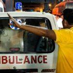 В Индии обезьяна убила младенца