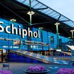 В аэропорту Амстердама задержали журналистку «Новой газеты» и сотрудницу «Мемориала»