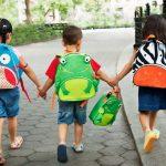 Большой выбор качественных сумок для взрослых и рюкзаков для детей