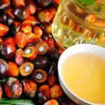 Поток пальмового масла в Россию остановится