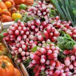 В России вступили в силу ограничения по провозу фруктов и цветов в багаже