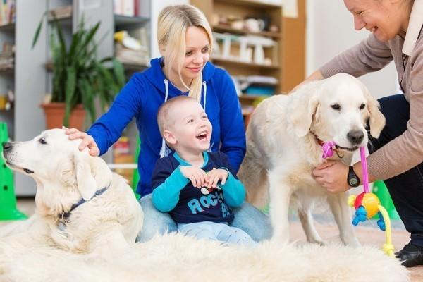Выбор домашнего животного для ребенка-аутиста