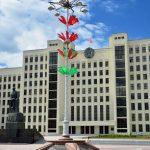 В Белоруссии зарегистрирован первый случай заболевания коронавирусом